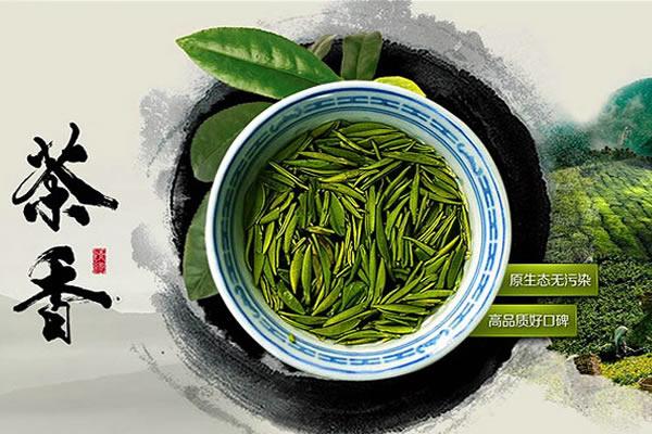 茶业品牌网站 PC+WAP